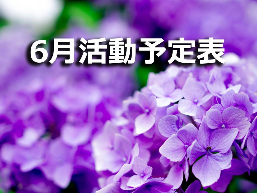 2016年6月の活動予定表